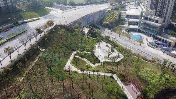 """消除城市绿化""""秃斑"""" 突出山城、江城特色 两江"""