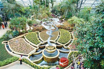 南山植物园温室内有什么?