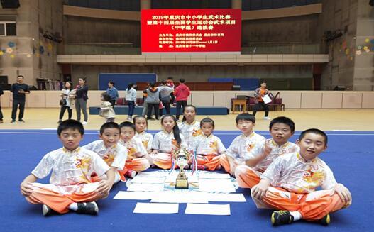 两江新区参加重庆市中小学生武术